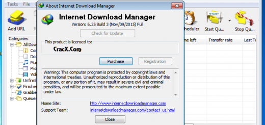Internet Download Manager 6.25 (IDM) Crack & Serial number
